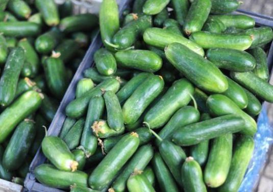 Як зберігати огірки?