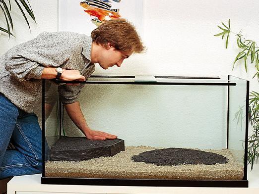 Як міняти воду в акваріумі?