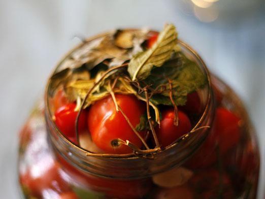 Як засолити помідори?